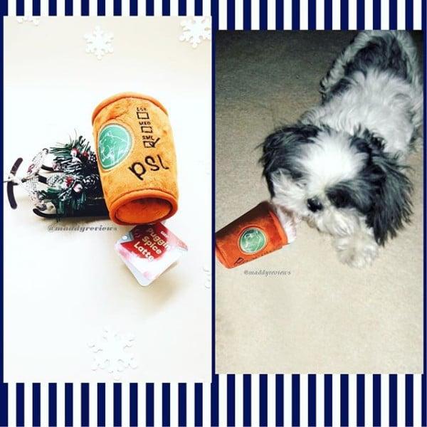 dog-bark-box-collection-subcription-box-plush-pluggin-spice-latte-toy