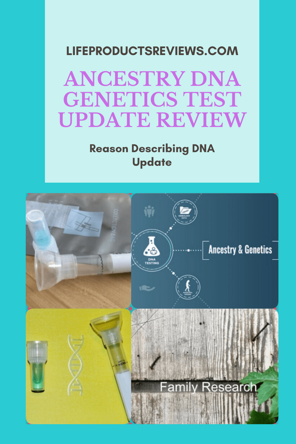 Ancestry-genetics-dna-update-review